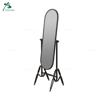 Floor Standing Decorative Mirror